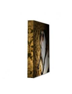 Canvas frame 4 cm thick, 26 x 27 cm